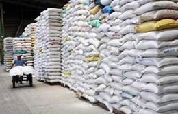 Xuất khẩu gạo giảm 7,8% so với cùng kỳ năm 2012