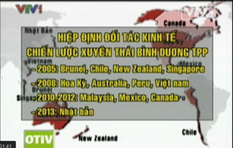 TPP - Cơ hội lớn cho nền kinh tế Việt Nam