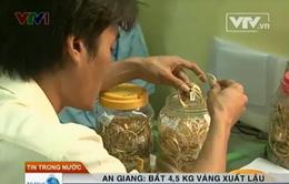 An Giang: Bắt 4,5 kg vàng xuất lậu