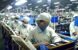 Các DN Nhật Bản mở rộng kinh doanh tại Việt Nam