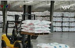 Nhập khẩu phân bón tăng gần 30%