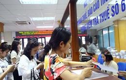 Quảng Ngãi cưỡng chế 232 doanh nghiệp nợ đọng thuế