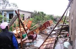 Xem xét gia hạn người vay vốn bị ảnh hưởng bởi bão số 10