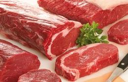 Vi phạm nhập khẩu động vật bị phạt tới 40 triệu đồng