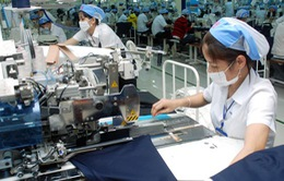 DN Dệt nhuộm yếu thế trước doanh nghiệp FDI