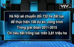 Hà Nội chuyển hơn 700 ha đất lúa làm dự án