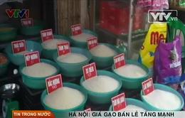 Gạo quê tăng giá mạnh, dân chuyển sang gạo Thái