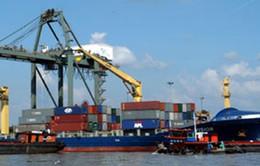 Tranh chấp thương mại quốc tế chiếm tỷ lệ cao