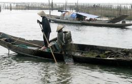 Huế: Cảnh báo nguy cơ mất nguồn tài nguyên cửa sông Ô Lâu