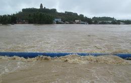 Hồ thủy lợi xả lũ, nguy cơ gây ngập trở lại vùng hạ du