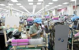 Ngành hải quan tìm cách gỡ khó cho doanh nghiệp FDI