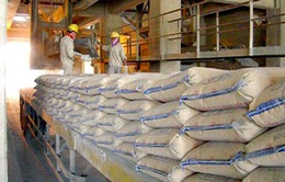 Xuất khẩu xi măng tăng 63%