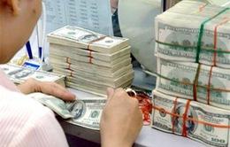 Nhu cầu vay ngoại tệ tiếp tục đáp ứng đến hết 2014