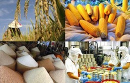 Xác định rõ thế mạnh nông sản trước thách thức hội nhập WTO