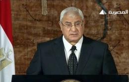 Ai Cập ấn định ngày tổ chức trưng cầu ý dân Hiến pháp mới