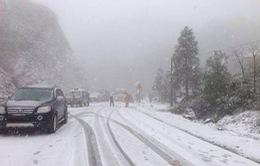 Tuyết rơi dày 20cm ở Sapa, Lào Cai
