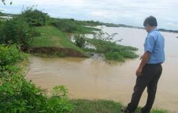 Thừa Thiên Huế khó khăn tiêu úng cho sản xuất Đông – Xuân