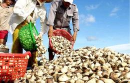 2013, sản lượng thủy sản ước đạt gần 6 triệu tấn