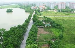 Phê duyệt Đề án: Phát triển các đô thị VN ứng phó với biến đổi khí hậu