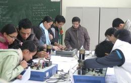 """Trao giải thưởng """"Tài năng khoa học trẻ Việt Nam"""" năm 2013"""