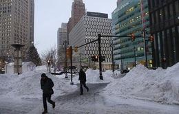 Giá lạnh kỷ lục, kinh tế Mỹ lao đao