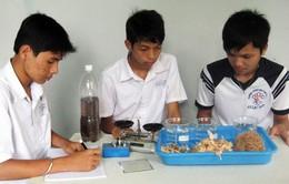 Việt Nam đăng cai Olympic Hóa học Quốc tế lần 46