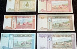 Các loại tiền in hình ngựa hút khách