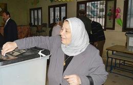 Ai Cập quyết định tổ chức bầu cử Tổng thống trước tổng tuyển cử