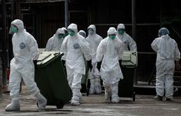 Trung Quốc: Thêm 1 người chết và 3 ca nhiễm cúm H7N9
