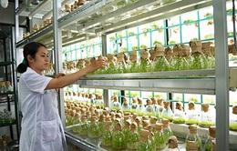 Vai trò của khoa học trong nông nghiệp