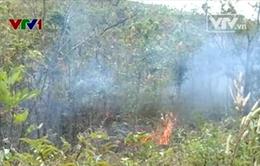 Gia tăng nguy cơ cháy rừng từ việc đốt rừng làm rẫy