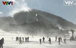 Chiến dịch dọn dẹp sau bão tuyết tại Hàn Quốc