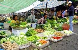 Giá rau, củ quả tiếp tục giữ ở mức thấp