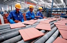 Hơn 71% doanh nghiệp lo chi phí nguyên, nhiên vật liệu tăng