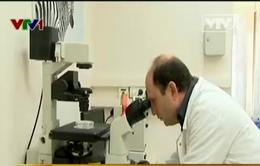 Anh: Xét nghiệm máu chẩn đoán bệnh tâm thần phân liệt