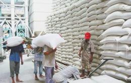 Philippines soán ngôi Trung Quốc về nhập khẩu gạo Việt Nam