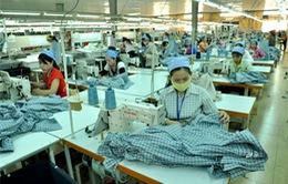 Dệt may chuyển mình đón cơ hội từ TPP