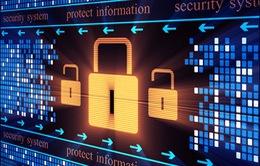 Kinh doanh bảo mật – Thị trường mới nhiều tiềm năng