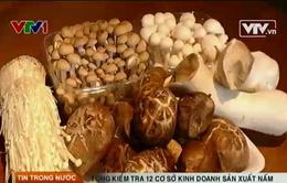 Hà Nội: Tổng kiểm tra 12 cơ sở kinh doanh sản xuất nấm