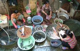 98% thủy sản ở Hà Nội nhiễm kim loại