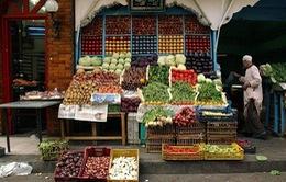 Chỉ số giá lương thực của FAO tăng cao nhất trong gần 1 năm