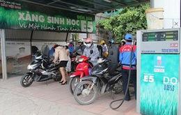 Từ 1/6, Quảng Ngãi là tỉnh đầu tiên sử dụng xăng sinh học E5