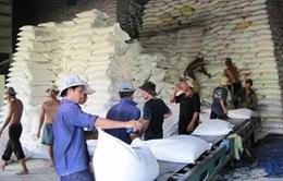 Xuất khẩu nông sản giảm 160 triệu USD trong 3 tháng