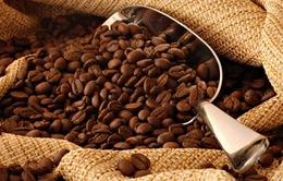 """Biến đổi khí hậu """"đe dọa"""" ngành công nghiệp cà phê"""