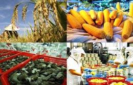 4 tháng, xuất khẩu nông sản tăng gần 14%