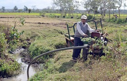 Các tỉnh miền Trung cần chủ động đối phó với tình trạng thiếu nước, khô hạn