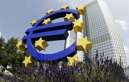 EU hạ thấp triển vọng tăng trưởng do rủi ro lạm phát