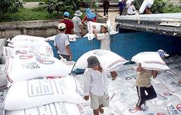 Xuất khẩu gạo tháng 4 không đạt kế hoạch