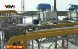 Giá dầu tăng sau cuộc trưng cầu dân ý tại Ukraine