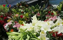 Nắng nóng, thị trường hoa giảm giá mạnh